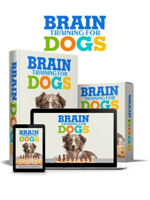 Best Brain Training For Dogs-Unique Dog Training Course USA 2021
